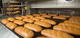 Bakeries, Bakery Plants